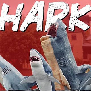 The Battle for Sharks!